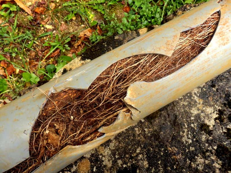 sewer repair services in Gastonia, NC